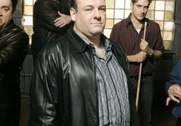 Tony Soprano Costume - The Sopranos - Tony Soprano Cosplay