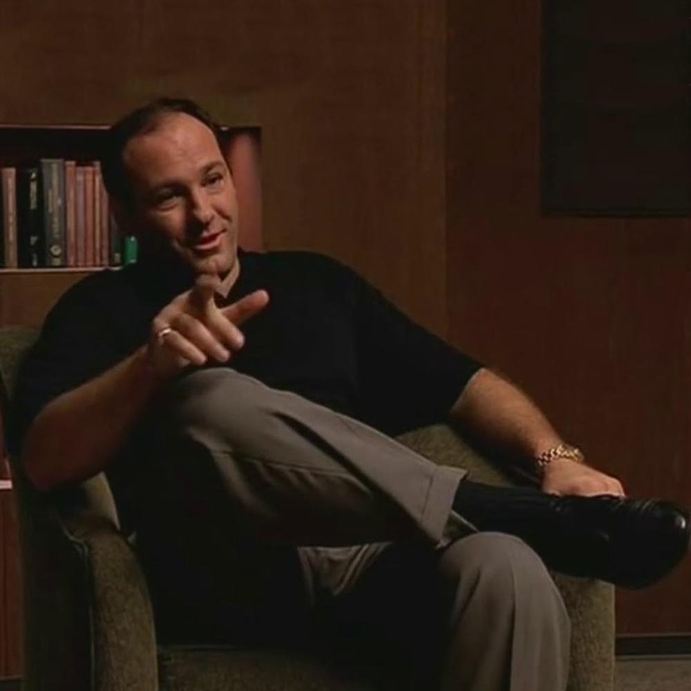 Tony Soprano Costume - The Sopranos - Tony Soprano Pants