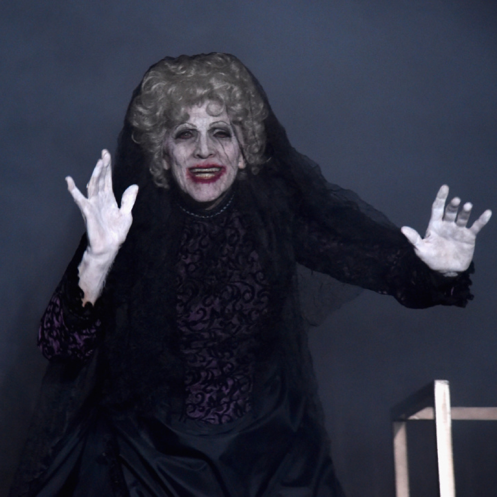 Bride in Black Costume - Insidious Fancy Dress - Bride in Black Face Paint