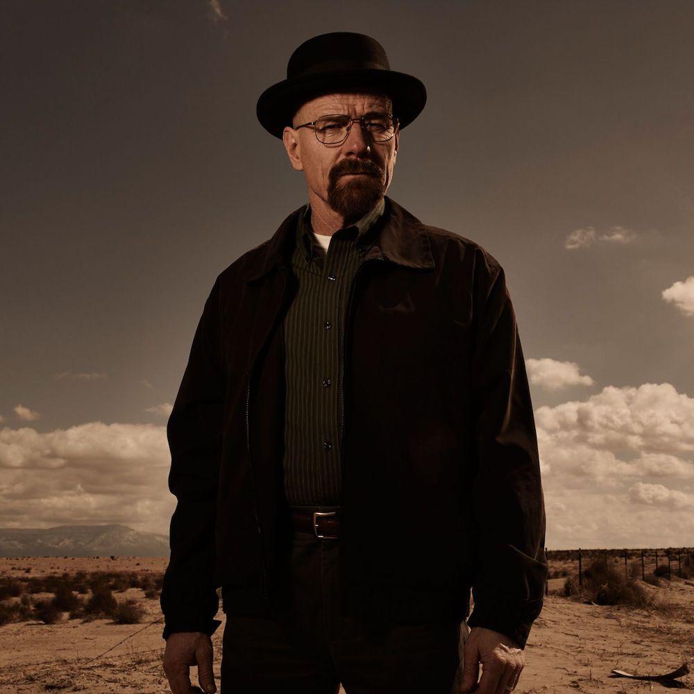 dress like walter white costume - Heisenberg jacket