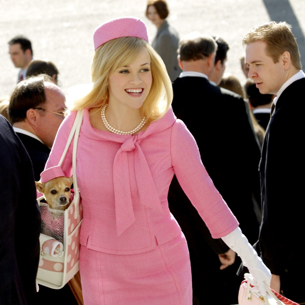 Elle Woods Costume - Legally Blonde Costume - Elle Woods Chihuahua