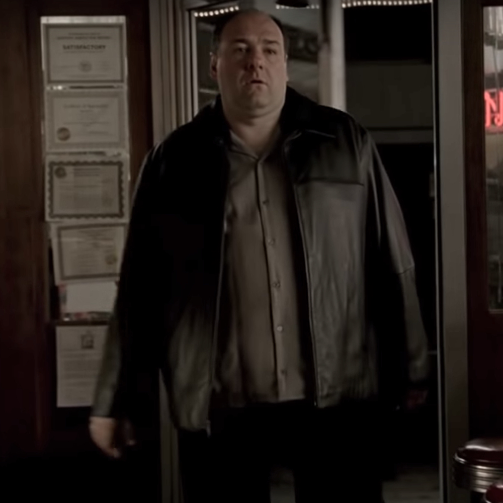 Tony Soprano Costume - The Sopranos - Tony Soprano Jacket