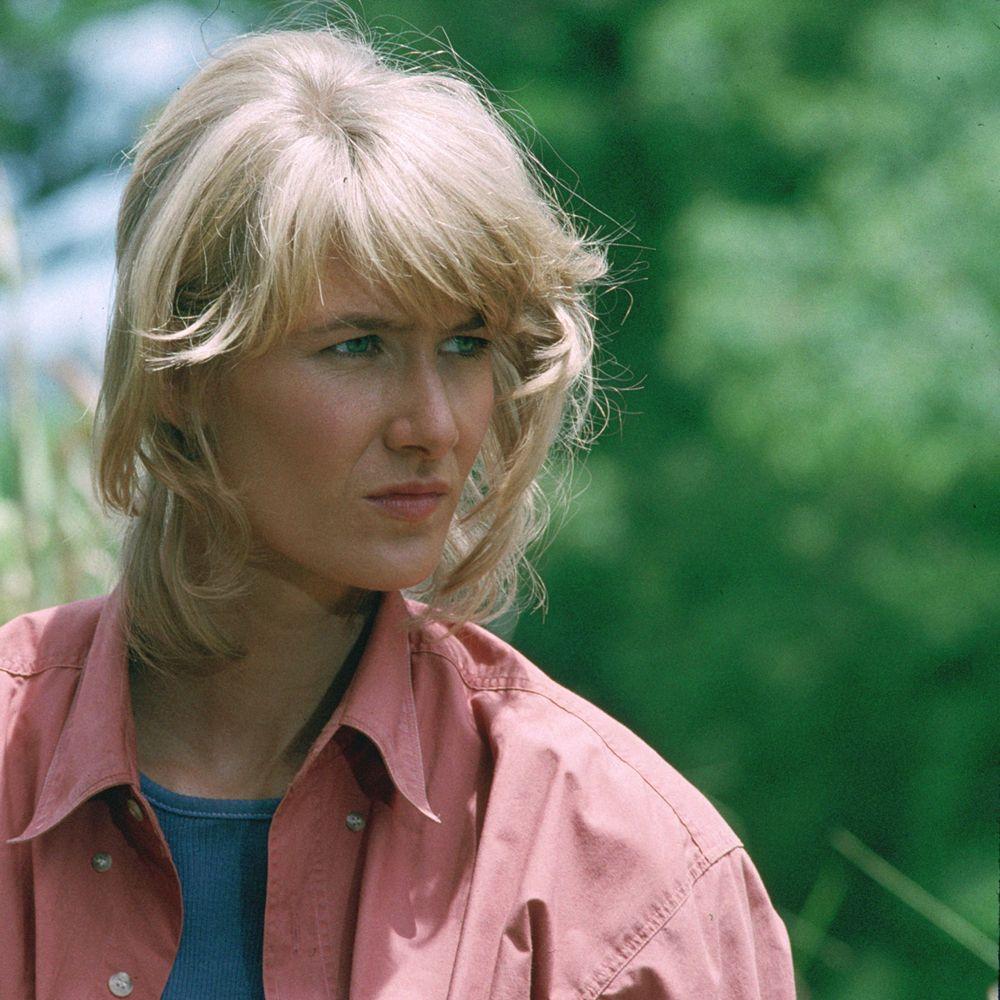 Dr Ellie Sattler Costume - Jurassic Park Fancy Dress - Dr Ellie Sattler Hair Wig
