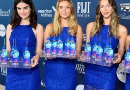 Fiji Water Girl Costume - Fiji Water Girl Fancy Dress - Fiji Water Girl Cosplay
