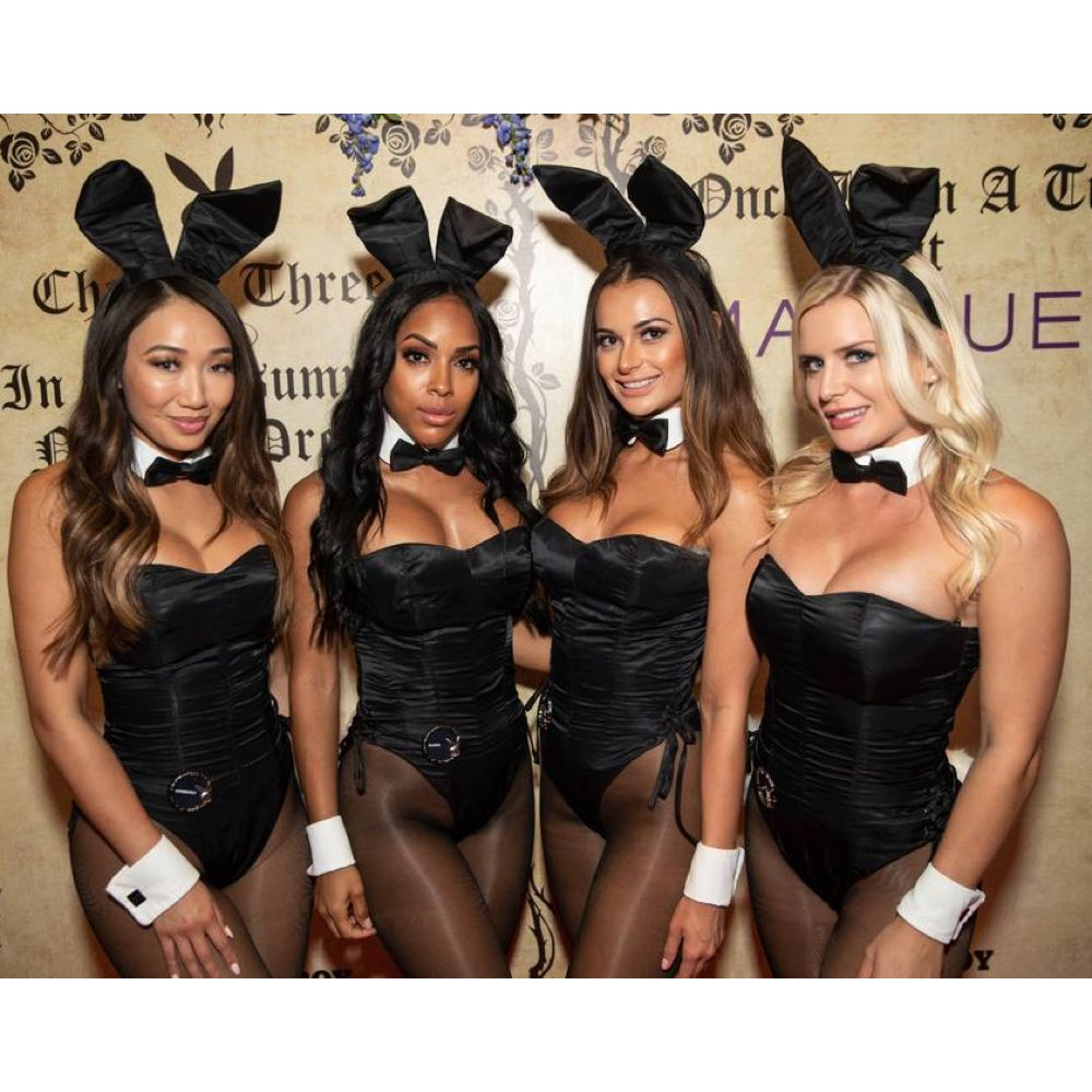 Playboy Bunny Costume - Playboy Fancy Dress - Playboy Bodysuit