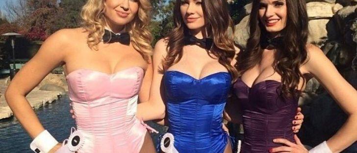 Playboy Bunny Costume - Playboy Fancy Dress - Playboy Bunny Cosplay